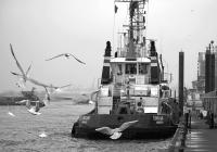 10043 Hafenschlepper Hamburg