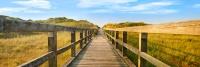 10033 SPO Die Brücke zum...