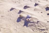 10121 St. Peter Ording Sand...
