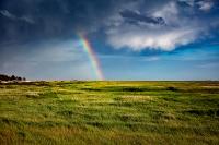 10385 SPB Regenbogen